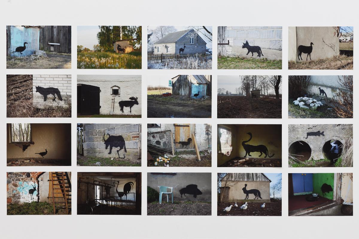 "Daniel Rycharski, Photographic Documentation of the Project ""Rural Street Art"""